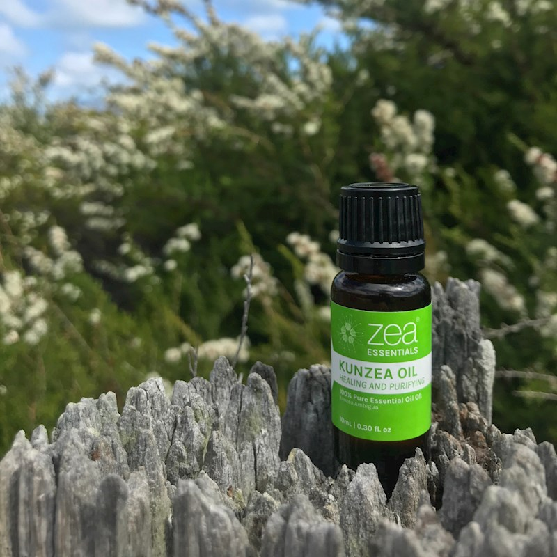kunzea & pure essential oil online
