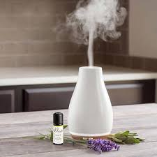 Buying Guide and Essential Points on Humidifiers
